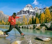 Canadian Rockies Cruisetours
