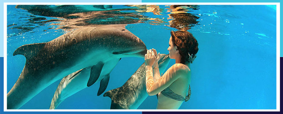 Cruises To Bahamas Royal Caribbean International Royal - Bahamas