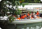 Gatun Lake Safari
