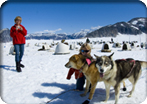 Dogsled Adventure by Helicopter