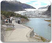 Mendenhall Glacier & Salmon Hatchery