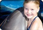 Close Dolphin Encounter