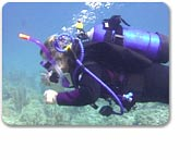 Nassau Certified Scuba 2 Tank w/out equipment