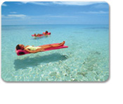 SeaTrek Floating Beach Mat