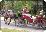Old Quebec Walk & Horse Carriage Tour
