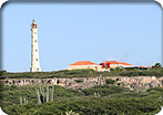 Aruba Sea & See Island Tour