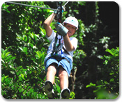 Aerial Trek Zipline Adventure
