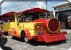 Calypso Train Tours