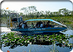 Everglades Airboat Ride (Ends at FLL)