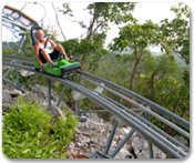 Dragons Tail Coaster - All Day Access