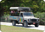 4 x 4 Safari Adventure & Dunn's River Falls