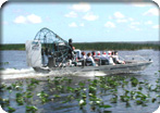 Alligator Airboat Adventure