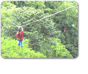 Rain Forest Canopy Adventure