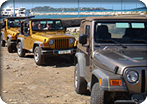 4x4 Jeep Wrangler Safari & Beach Escape