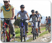Bike Adventure in Konavle Valley