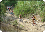 Mountain Biking in Palma
