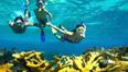 Experience The Bahamas