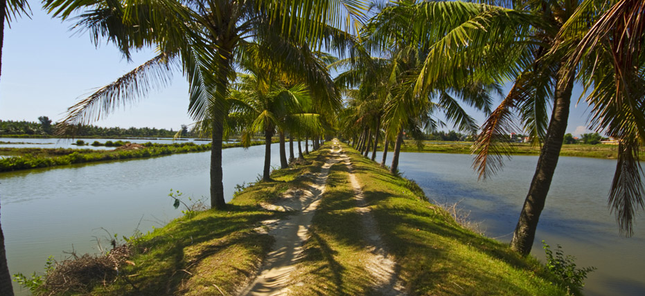 hue  danang  chan may port   vietnam