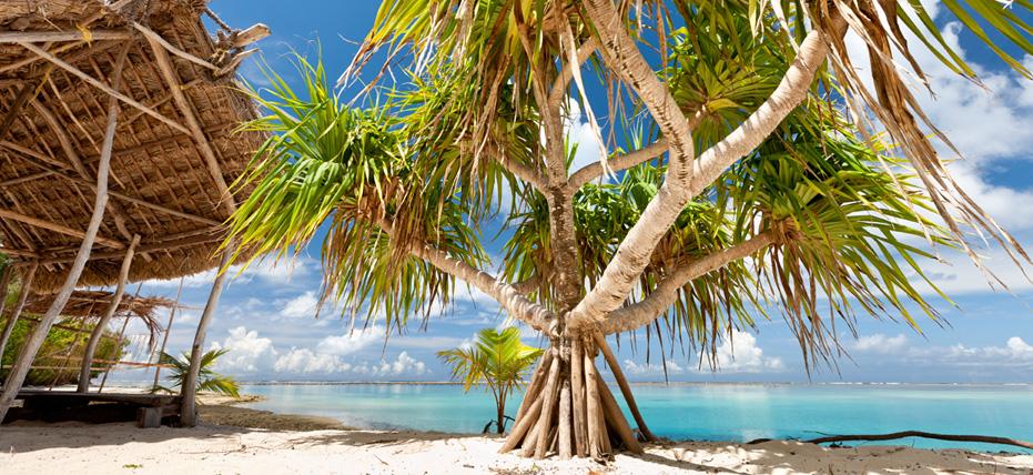 Mystery Island Vanuatu Royal Caribbean International