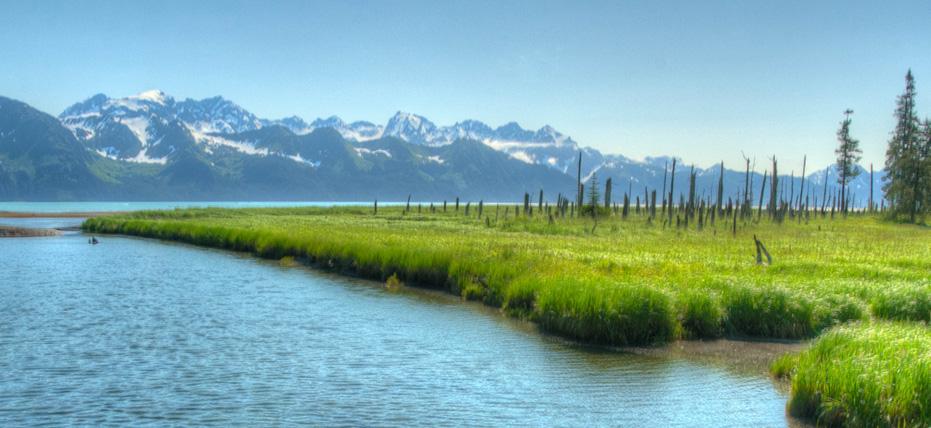 Seward alaska royal caribbean international for Do you have to buy land in alaska