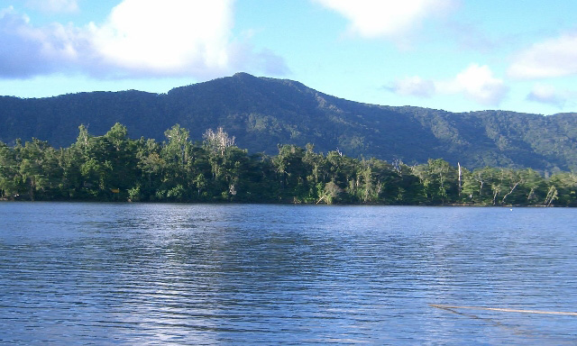 Cape Tribulation and Daintree Eco Experience