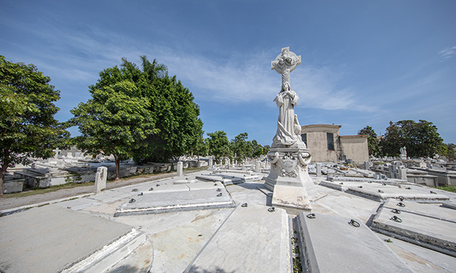Best of Havana Express with Colon Cemetery
