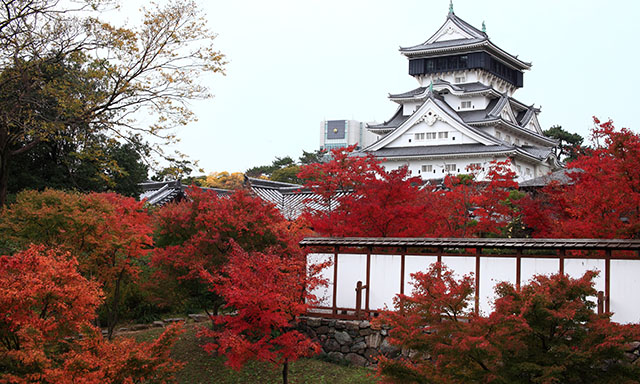 Kokura Castle and Karato Market
