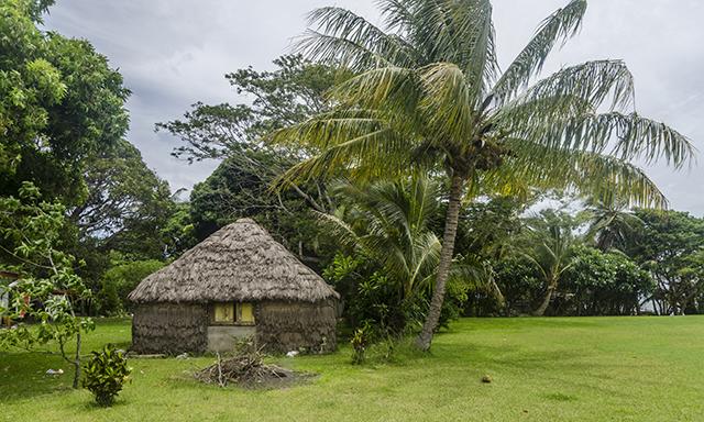 Melanesian Encounter