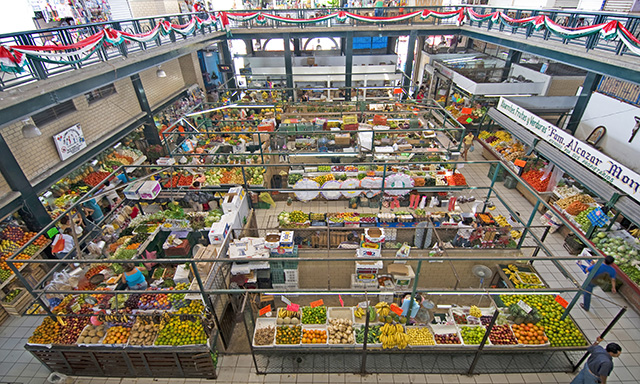Public Market & Iguana Sanctuary