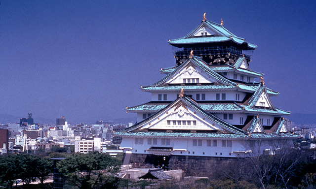 Osaka Panoramic Night Tour