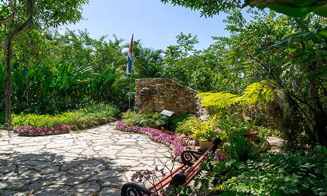 Botanical Garden Discovery