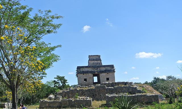 Dzibilchaltun Ruins & Merida City with Lunch
