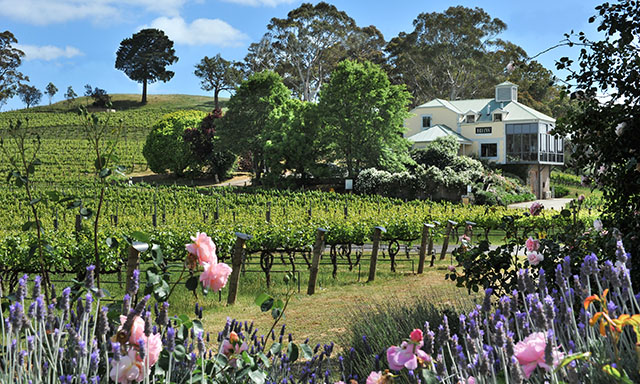 Adelaide Hills Winery and Historic Hahndorf