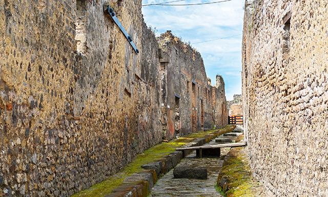 Pompeii on Your Own Transfer