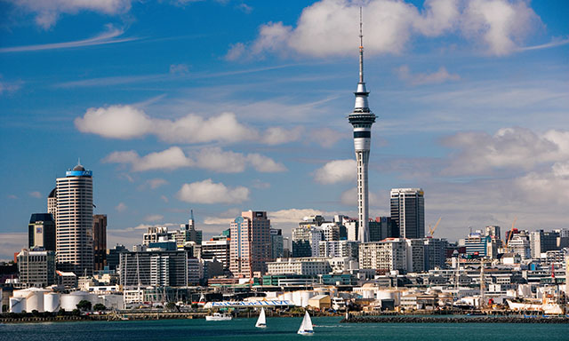 Auckland City and Harbour Highlights with Hotel/Cruise Terminal Drop Off