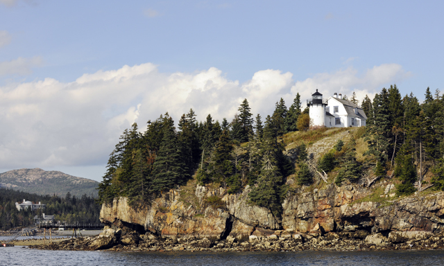 Frenchmans Bay Scenic Nature Cruise
