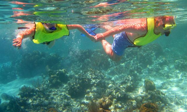 All Inclusive Barrier Reef Snorkeling Wonders and Beach Break