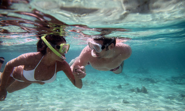 4 x 4 Safari & Shipwreck Snorkel