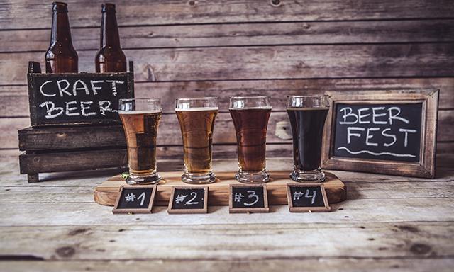 Brisbane Beer Journey