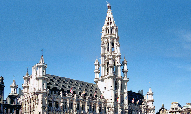 Brussels Sightseeing With Lunch