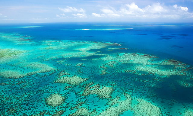 Captain Cook, The Great Barrier Reef and the birth of Cooktown