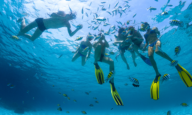 Buck Island Sail & Snorkel featuring National Geographic Snorkeler