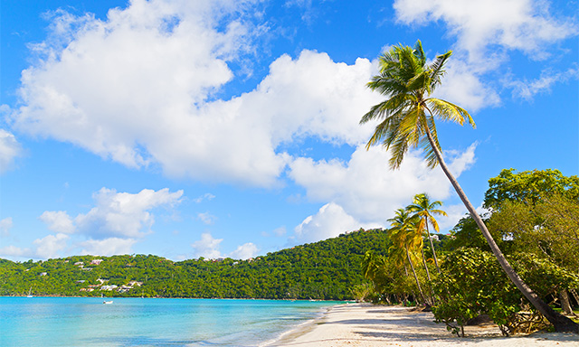 Discover St. Thomas and Magen's Bay