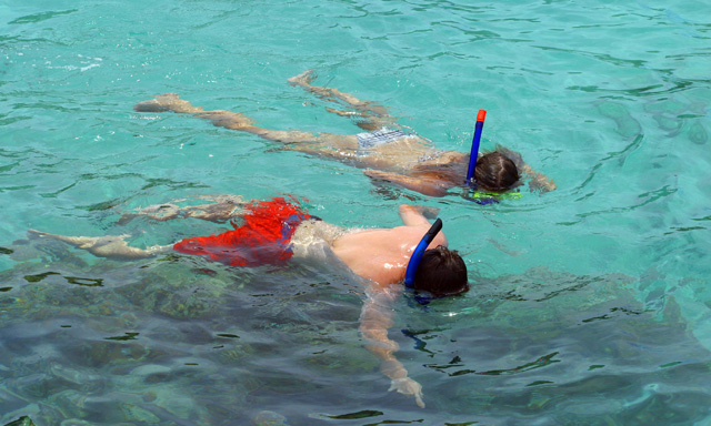 Adventure Snorkel with Stingrays & Turtles on Sea Blaster