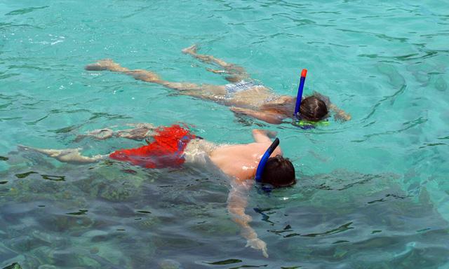 Adventure Snorkel with Stingrays & Turtles on Sea Blaster