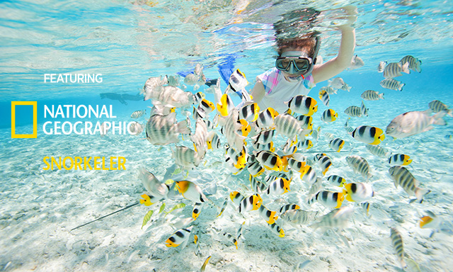 CocoCay Snorkeling Explorer Featuring National Geographic Snorkeler