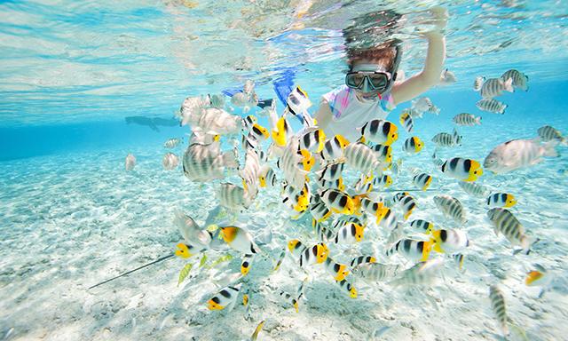 CocoCay Snorkeling Explorer