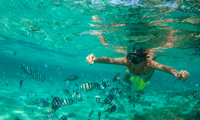Reef Snorkeling and Sandbar Getaway