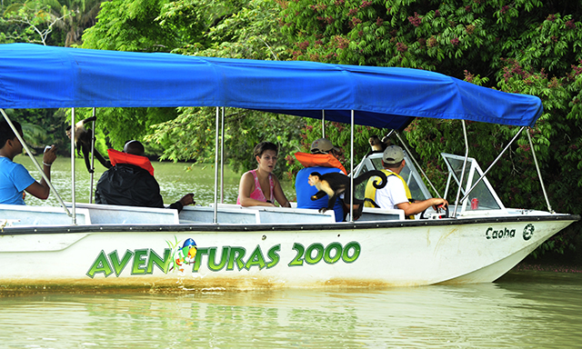 Panama Canal and Monkey Eco-Tour