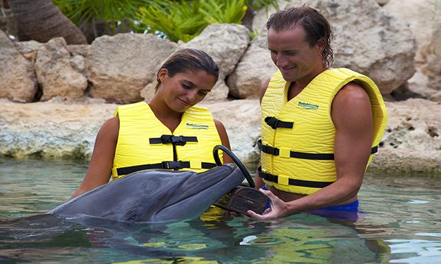 All-Inclusive VIP Dolphin Swim Experience